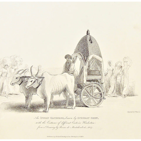 India, Indian, Indian Hackeree, Hackeree, Guzerat Oxen, Guzerat, Gujarat, Ox, Oxen, Costume, Casts, Hindostan, Hindu, Different casts, Baron de Montalembert, 1807, James Forbes, Forbes, Eliza Rosée, Countess De Montalembert, Oriental Memoirs, Narrative of Seventeen Years Residence in India, Bentley, 8 New Burlington Street, London, Wageman, Nichols & Son, 25 Parliament Street, 1834, Steel engraving, Antique Prints, Antique, Prints, Printmaking, Original, Rare, Rare books, Collectable, Unique, Wall decor,