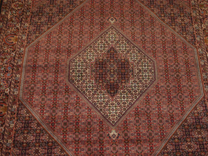 6'11'' X 10'3'' Persian Beijar Medallion Semi-Antique Rust Rectangle Wool Rug - Direct Rug Import | Rugs in Chicago, Indiana,South Bend,Granger