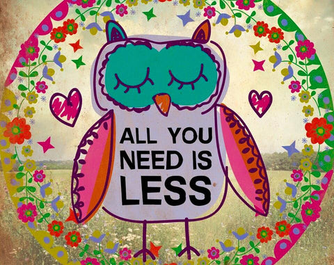 ALL YOU NEED IS LESS - THE GREEN OWL BLOG