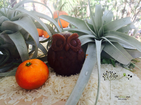 Pumpkin Owl Handmade Soap - The Green Owl