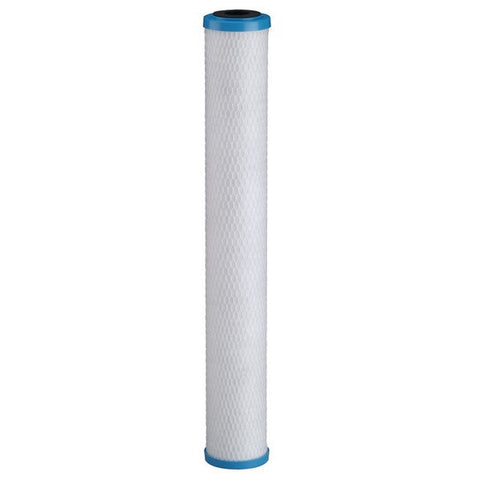 Pentek ChlorPlus 20 Carbon Filter Cartridge (255417-43)