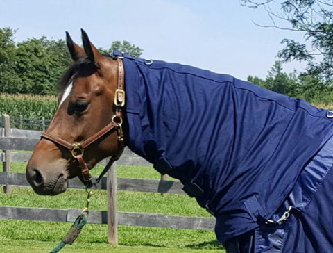 Back on Track Therapeutic Mesh Horse Neck Cover