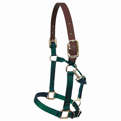 "Walsh Breakaway 1"" Halter w/ Adjustable Chin"