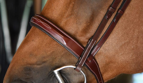 Red Barn Tuscany Hunter Bridle