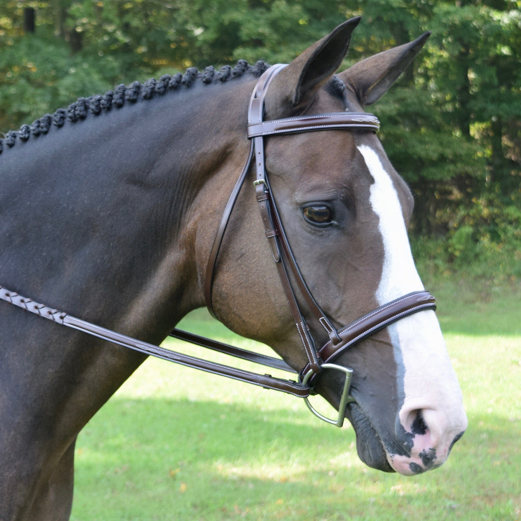 Red Barn Spirit Hunter Bridle