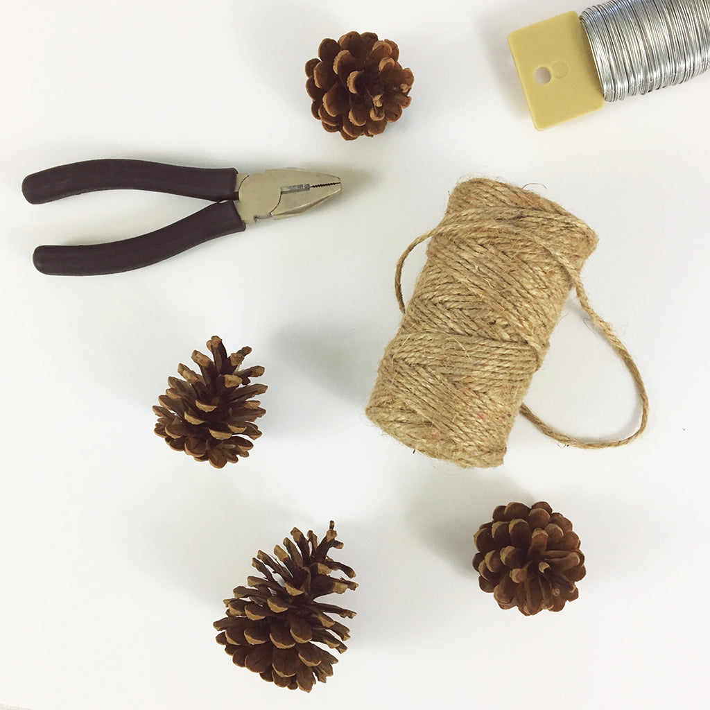 Blog DIY: Pinecone Garland