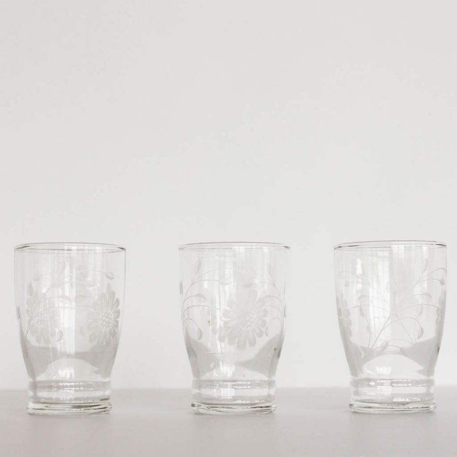 Vintage Floral Juice Glasses