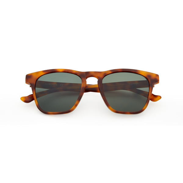Tortoise frame polarized wayfarer with G-15 lens