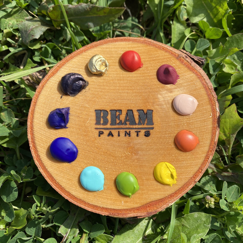 Beam Birch Cookie Palette - Spectrum