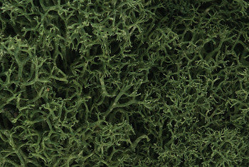 Lichen Medium Green L163