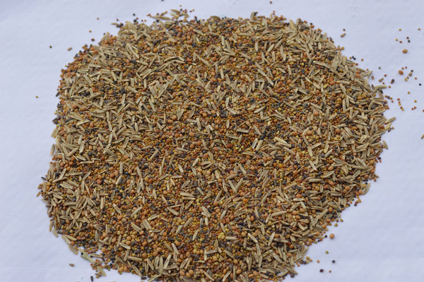 Whitetail Premium Seed Mix