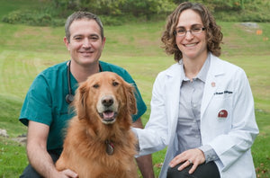 Dr. Dressler and Dr. Ettinger sitting with golden retriever dog
