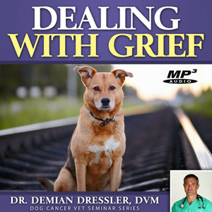 Dealing with Grief [MP3]