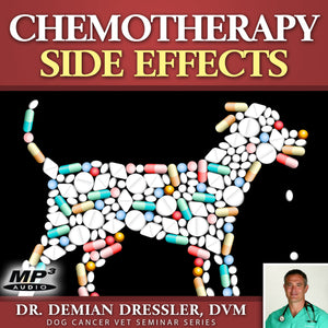 Dog Cancer Chemotherapy Side Effects [MP3]