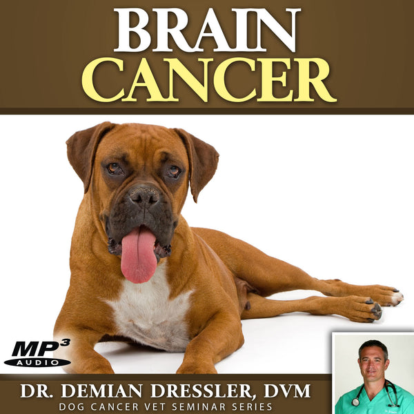 Brain Cancer in Dogs [MP3]