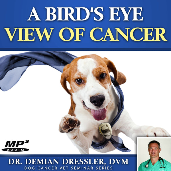 A Bird's Eye View of Dog Cancer [MP3]
