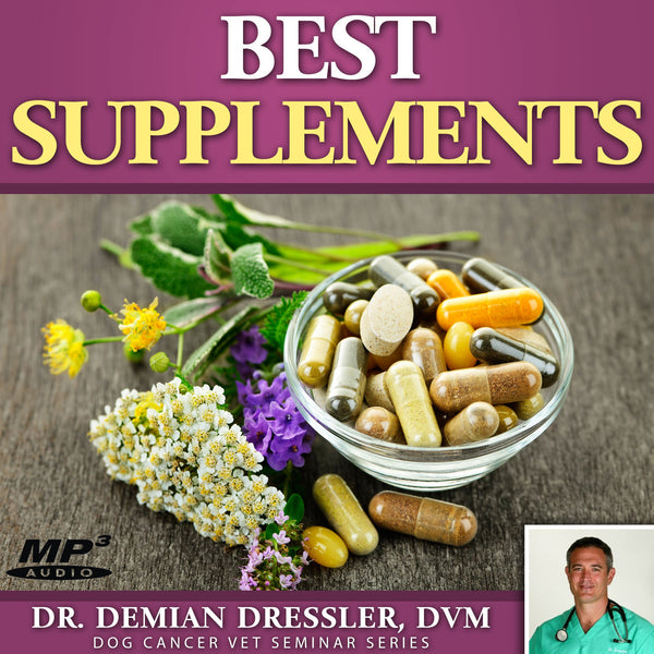 Best Supplements for Dog Cancer: The Supplement Hierarchy [MP3]