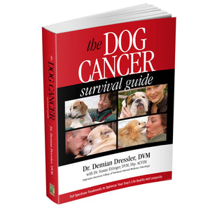 Dog Cancer Survival Guide (Paperback book)