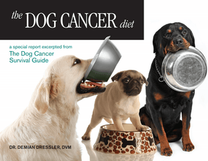 Dog Cancer Diet PDF
