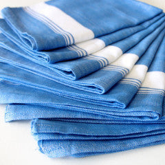 Set of 10 Color Napkins - Kara Weaves  - 4