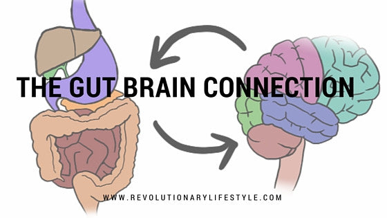 The Gut Brain Connection 101