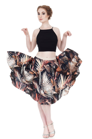 the ballet skirt in night palms