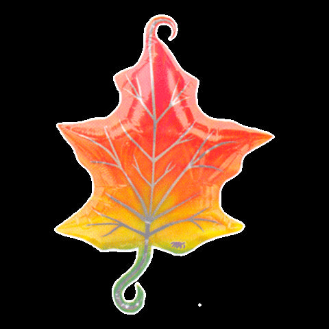"Autumn Maple Leaf Helium Mylar Balloon 71cm / 28""-O Canada"