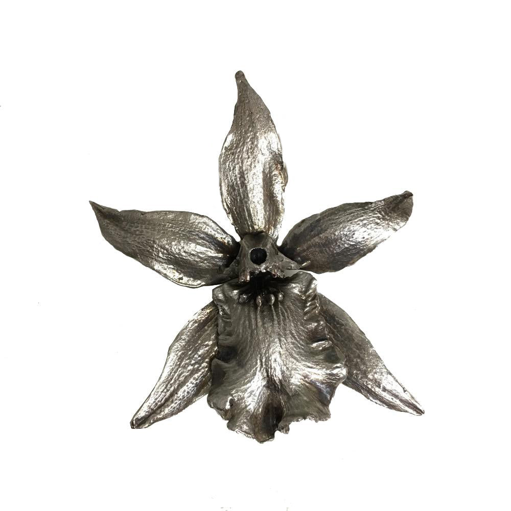 Monumental Bat Orchid Brooch Pin