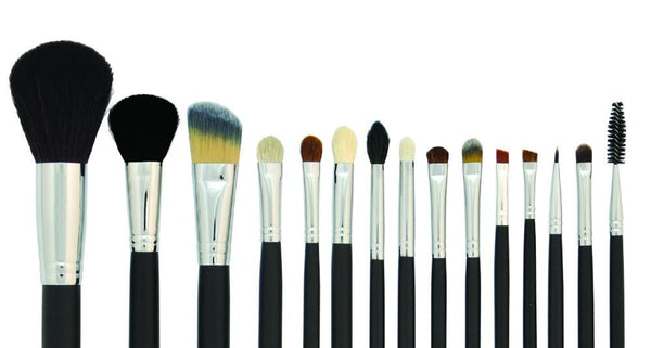 Professional 15 Piece Brush Set with Travel Case