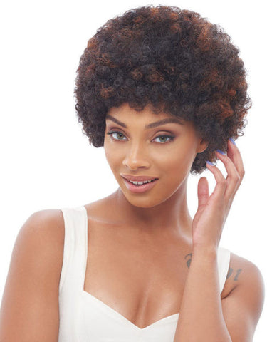 Janet Collection H/H Afro Human Hair Wig - Wow Beauty Supply - 1
