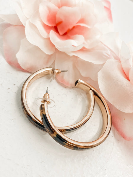 Dreaming of Forever Hoops