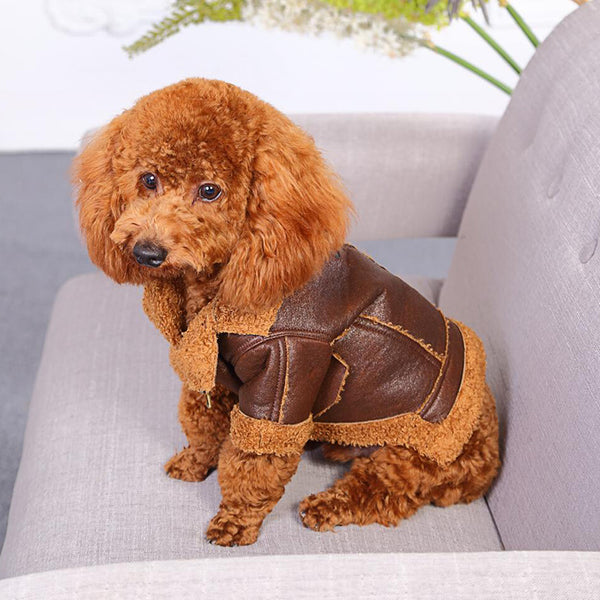 Leather Dog Coat - Brown