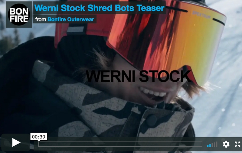Werni Stock and the SHREDBOTS