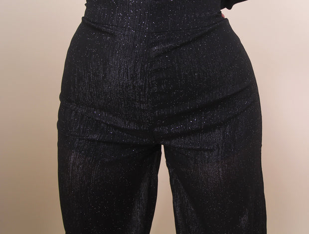 'CELINE' Sparkly Mesh Detailed High Waisted Pants