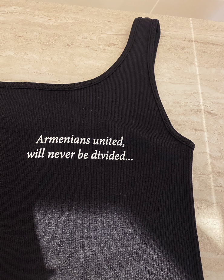 'ARMENIANS UNITED, WILL NEVER BE DIVIDED'