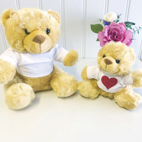 personalised teddy bear valentines good luck birthday get well cheer up exams personalised gift with  name in glitter teddy bear with t shirt