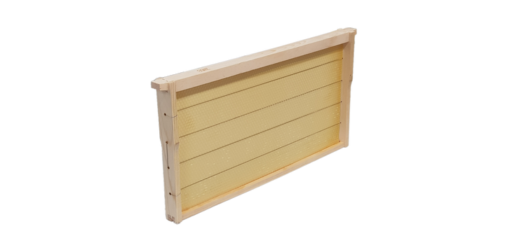 Wooden Frame fitted with Beeswax Foundation
