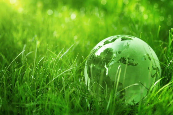 Going Green - Striving For Sustainable Production