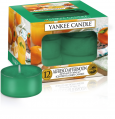 Yankee Candle Alfresco Afternoon Tea Lights 12 st Geurkaars