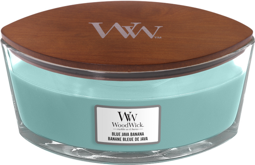 Woowick Blue Java Banana Ellipse Candle