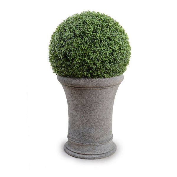"22"" Boxwood Ball In Classic Drum Pot - New Growth Designs"