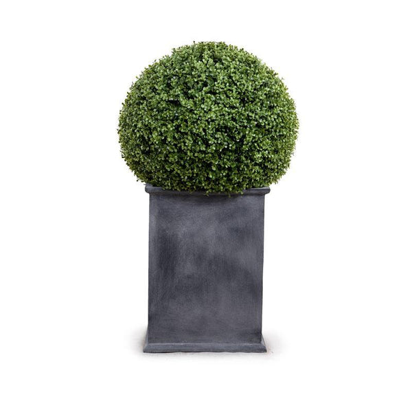 "22"" Boxwood Ball in Square Pot - New Growth Designs"