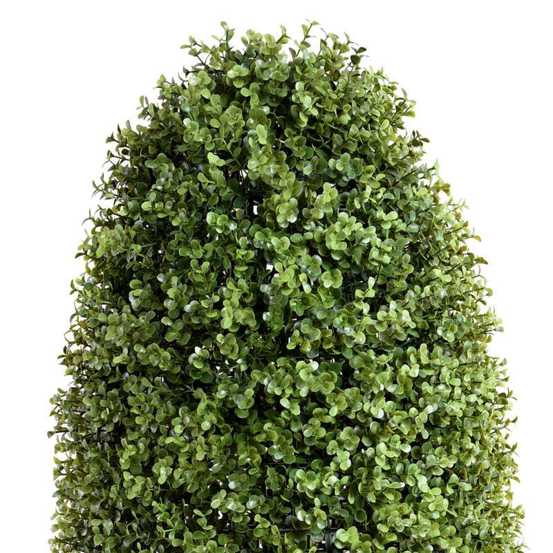 Boxwood Cone - New Growth Designs