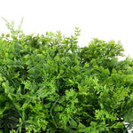 "10"" Maidenhair Fern Panels - New Growth Designs"