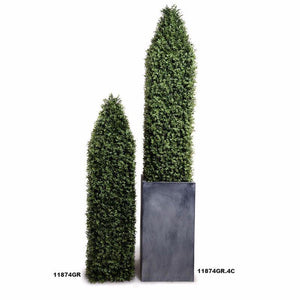 Boxwood Obelisk - New Growth Designs