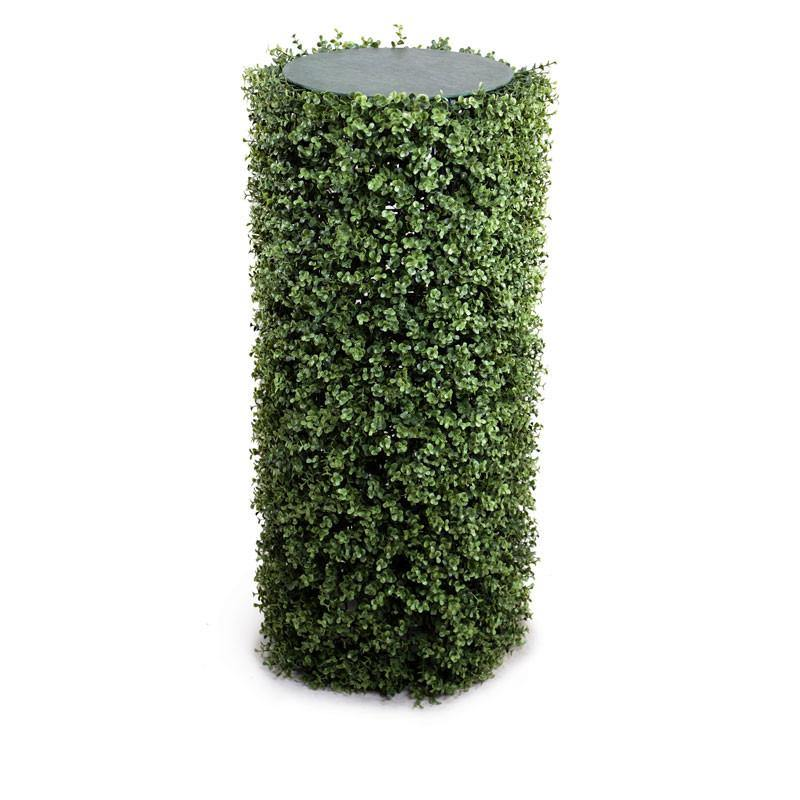 "Boxwood Cylinder, 40""H - New Growth Designs"