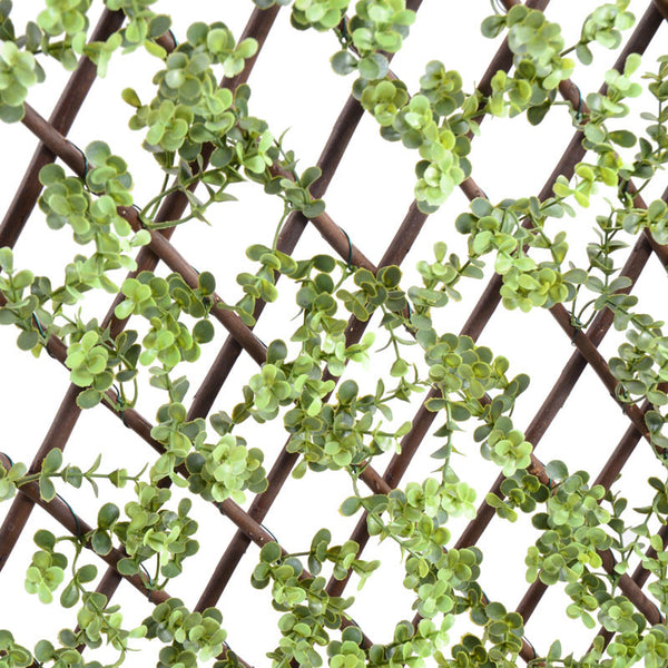 Boxwood Expanding Lattice Screen - New Growth Designs