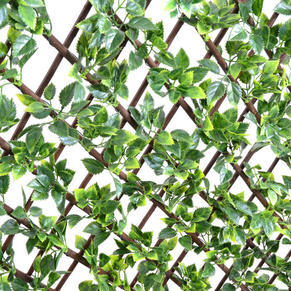 Expanding Lattice Screen, Rose Leaf - New Growth Designs