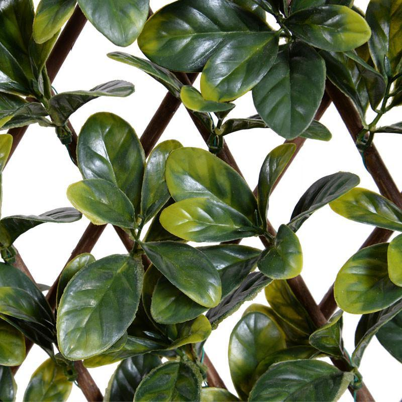 Expanding Lattice Screen, Bayberry - New Growth Designs