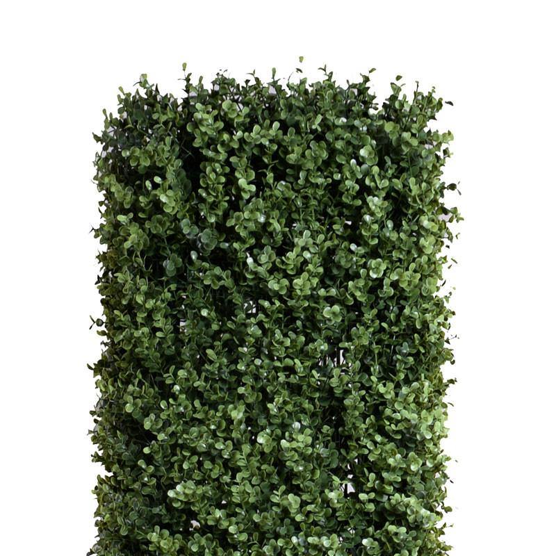 Boxwood Column Topiary - New Growth Designs